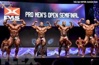 Open Bodybuilding Comparisons - 2015 EVLS Prague Pro
