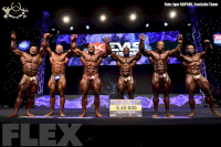 Open Bodybuilding Awards - 2015 IFBB EVLS Prague Pro