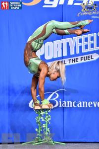Fitness Routines - 2015 IFBB Nordic Pro