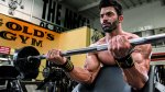 Straight Up Biceps Workout