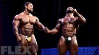 Men's Open Bodybuilding Awards - 2015 IFBB Nordic Pro