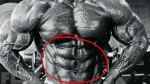 Revitalize Your Abdominal Workouts