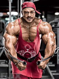 roelly-cable-flyes