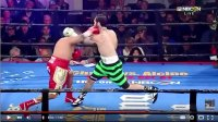 Top 20 Boxing Knockouts of 2015