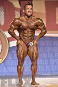 Hidetada Yamagishi - 212 Bodybuilding - 2016 Arnold Classic
