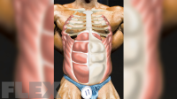 Build Your Own 6-Pack