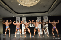 Open Bodybuilding Comparisons: Part 2 - 2016 IFBB New York Pro