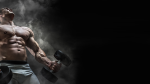 28 Days to Massive Arms Workout Program