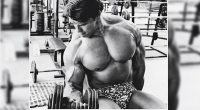 arnold-dumbbell-curl