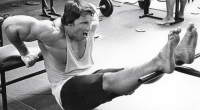 arnold-tricpes-dip-bench