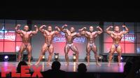 2016 Toronto Pro Prejudging: Open Bodybuilding