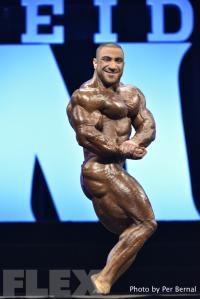 Ahmad Ashkanani - 212 Bodybuilding - 2016 Olympia
