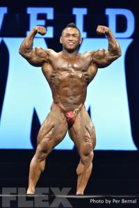 Hidetada Yamagishi - 212 Bodybuilding - 2016 Olympia