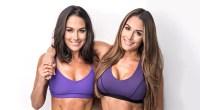 bella-twins-posing