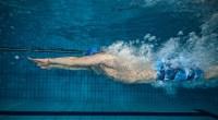 swim-dive-6