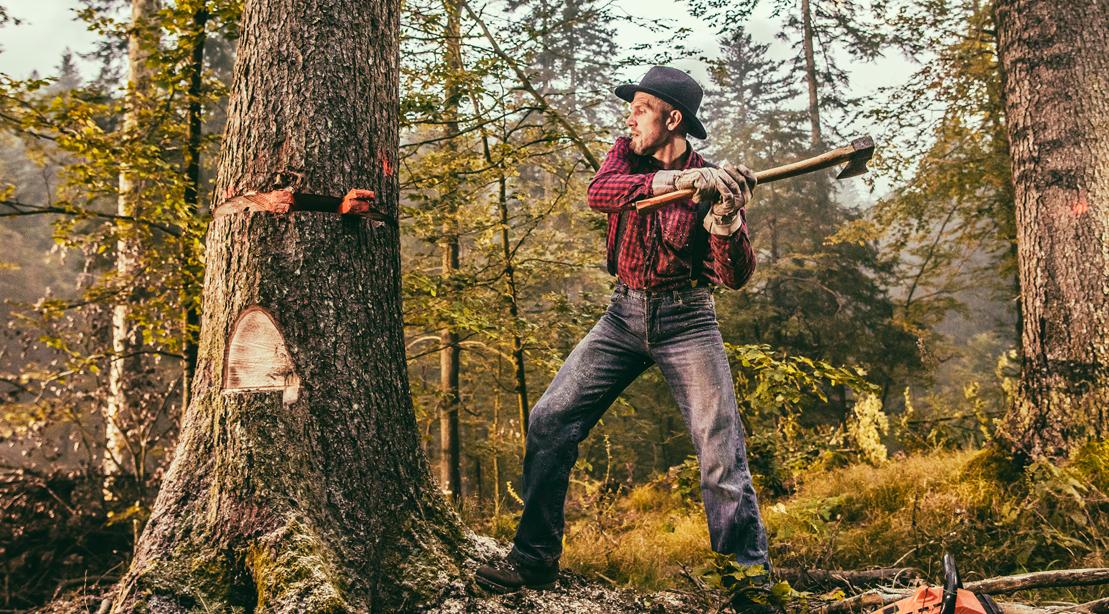man-chopping-tree