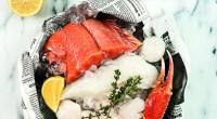 5 Hearty Winter Wildfish Recipes