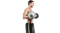 level up biceps