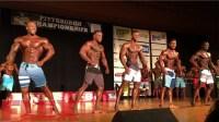 2017 IFBB Pittsburgh Pro Men's Physique Finals