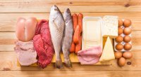 A Beginner's Quick Guide to Protein
