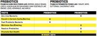 Chart-Prebiotics-vs-probiotics