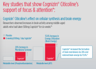 Cognizin-Chart-2