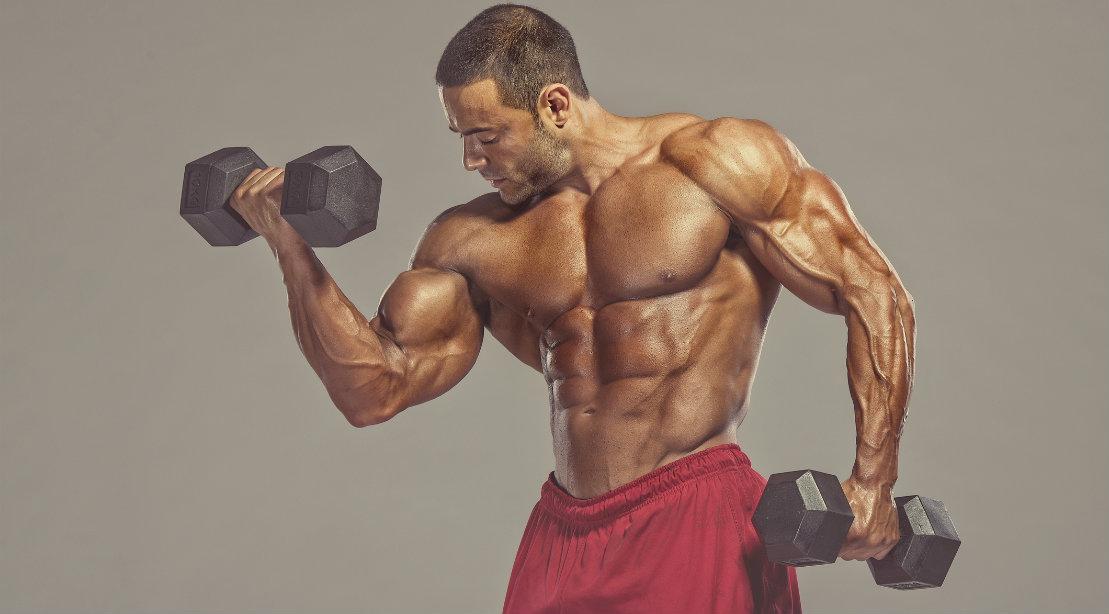 Bodybuilder curling dumbbell during arm workout