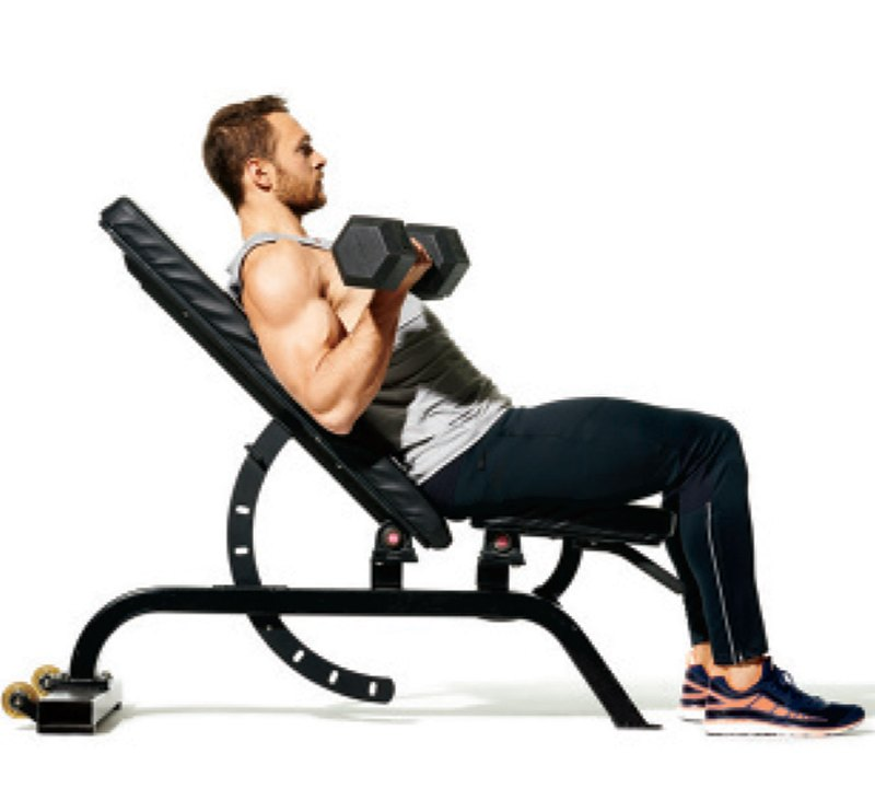 Incline Dumbbell Biceps Curl