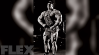 dorian-yates-cable-lateral-raise
