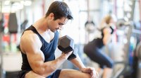 Muscular fitness model working out in a gym doing seated bicep curl exercise