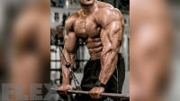 henri-pierre-ano-chest-triceps