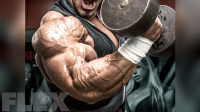 zack-khan-biceps-curl