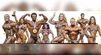 Olympia-Caliber Muscle