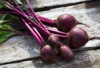 5 Ways to Bring Beets Into Your Diet