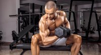 Muscular bodybuilder working out his biceps with a bicep concentration curl exercise