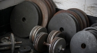 Weight plates and dumbbells
