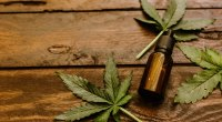 CB-Don't! New York City Department of Health Cracks Down on Restaurants and Bars Selling CBD Products