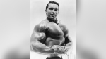 Arnold Schwarzenegger's Advice and Workout for Jacked Shoulders