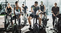 Spin-Class-Group-Cycle