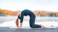 Back-Cat-Cow-Yoga-Pose