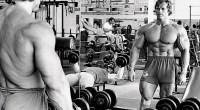 Arnold-Looking-Mirror