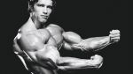 Arnold-Showing-Forearms.