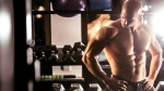 Build-Chest-Workout-Bodybuilder-Resting-Dumbbell-Rack-998035390