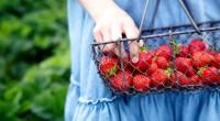 Strawberry-Basket