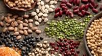 Legumes-Beans