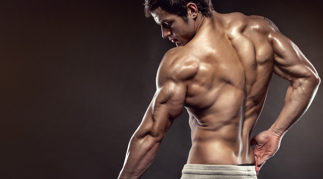The Ultimate Arm Workout For Beginners | Muscle & Fitness