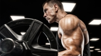 Focused muscular fitness model doing a barbell bicep curl exercise