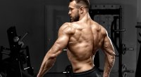 Fit male with a muscular upper back posing and showing his physique