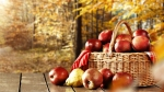 Basket-APples-On-Wooden-Table-Fall-Leaves-Tress