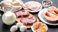 Variety-Of-Meat-Proteins